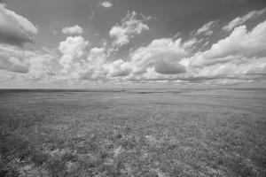 Cloud Plain BW