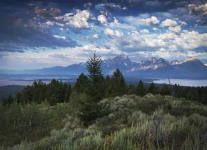 Grand Teton from Signal Mountain