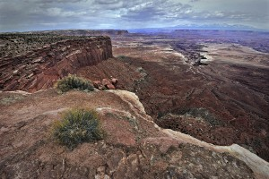 White Rim Canyon Rim